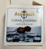 Corail d'Oursin_