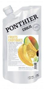 Exotische vruchten coulis