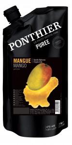Mango Alphonso fruit puree