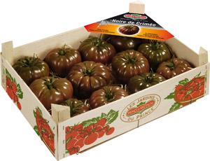 Tomaten noire de crime Prince de Bretagne