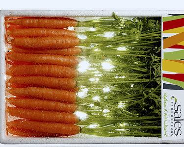 Mini wortel oranje (barquette)