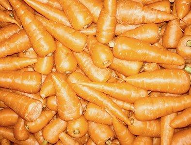 Wortel Chantenay oranje