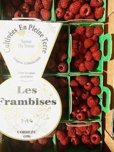Frambozen 10 bakjes per plateau